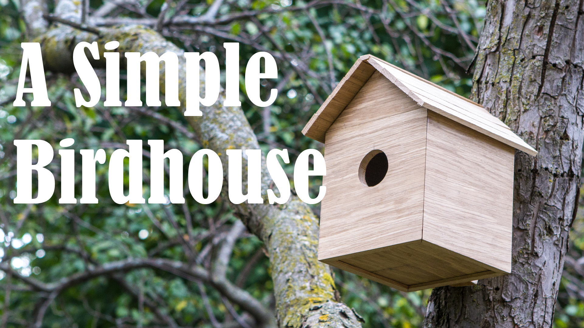 A Simple Birdhouse (Blind Mitered Dovetails)