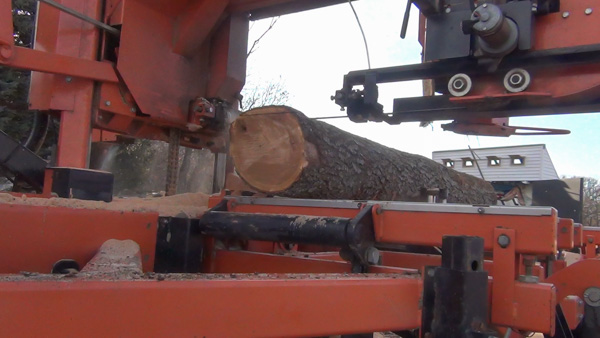 The first cut starts the process of removing the roundness of the log.