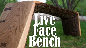Live Face Bench