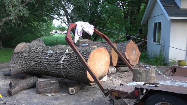 picking-up-the-ash-log